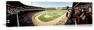 Chicago, Illinois Old Comiskey Park Panorama Picture