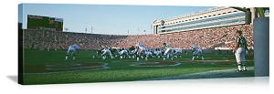 Chicago, Illinois Football Game at Soldier Field Panorama Picture