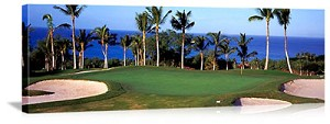 Maui Hawaii Golf Course Picture