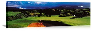 Princeville Hawaii Golf Course Picture