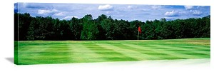 Delaware County Golf Course New York Picture
