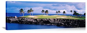 Hawaii Golf Course Picture