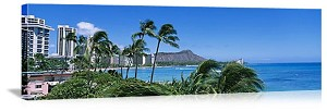 Honolulu, Hawaii Palm Trees on Waikiki Beach Panorama Picture