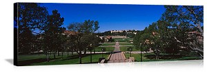 Los Angeles, California UCLA Janss Steps Panorama Picture