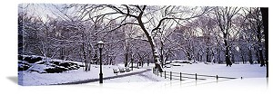 New York, New York Winter in Central Park Panorama Picture