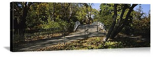 New York, New York Central Park Foot Bridge Panorama Picture
