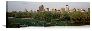 New York, New York Central Park Skyline Panorama Picture