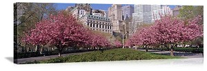 New York, New York Spring in Battery Park Panorama Picture