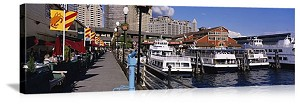 Seattle, Washington Boats at Mooring Panorama Picture