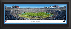 Carolina Panthers Bank Of America Stadium Deluxe Framed Picture