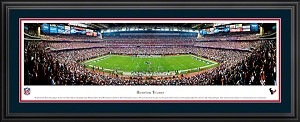 Houston Texans Deluxe Framed Picture