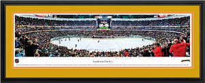 Anaheim Ducks Honda Center Deluxe Framed Picture