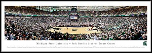Michigan State University Framed Arena Picture 4