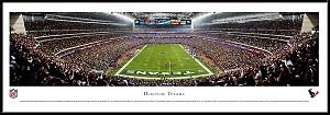 Houston Texans Framed Stadium Picture 2