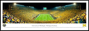University Of Michigan Wolverines Framed Arena Picture