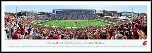 Washington State University Framed Picture