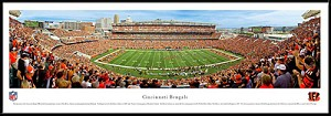 Cincinnati Bengals Framed Stadium Picture