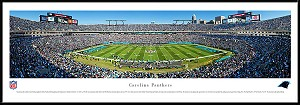 Carolina Panthers Framed Bank Of America Stadium Picture