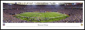 Minnesota Vikings Framed Stadium Picture