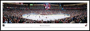 Phoenix Coyotes Framed Arena Picture