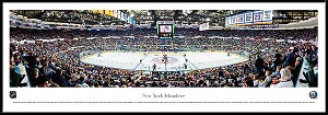 New York Islanders Framed Arena Picture