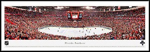 Florida Panthers Framed Arena Picture