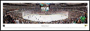 Dallas Stars Framed Arena Picture