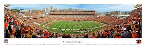 Cleveland Browns Stadium Picture