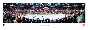 Detroit Red Wings Joe Louis Arena Picture