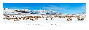 Grand Teton National Park, National Elk Refuge Panorama Picture