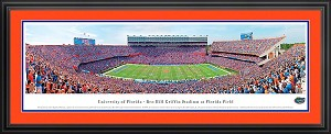 University of Florida Ben Hill Griffin Stadium Deluxe Framed Picture 2