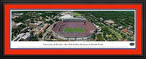 University of Florida Ben Hill Griffin Stadium Deluxe Framed Picture 1