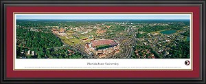 Florida State University Doak S. Campbell Stadium Deluxe Framed Picture 1