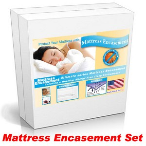 Short Queen Bed Encasement Kit, For Mattress, Box Spring, and 2 Queen Size Pillows