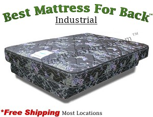 Expanded Queen Industrial, Best Mattress For Back