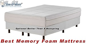 "Twin Extra Long Best Memory Foam Mattress 11"" Thick"