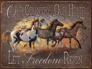 Our Country Home Vintage Metal Sign