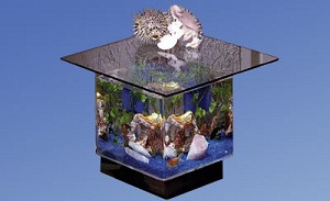 Coffee End Table Aquarium