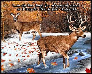Longing for You Deer Inspirational Tapestry