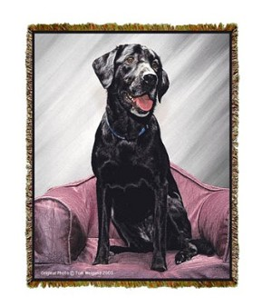 Black Lab Tom Weigand © Tapestry