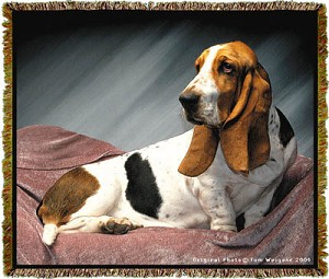 Basset Hound Tom Weigand © Tapestry