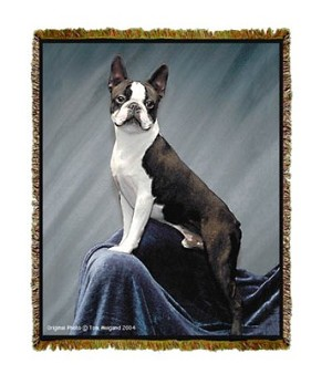 Boston Terrier Tom Weigand © Tapestry