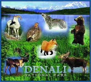 Denali National Park Tapestry