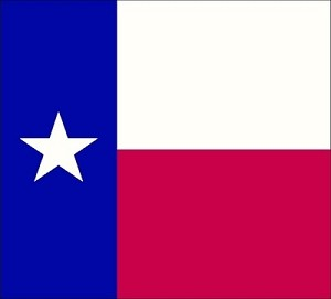 Texas Flag Tapestry