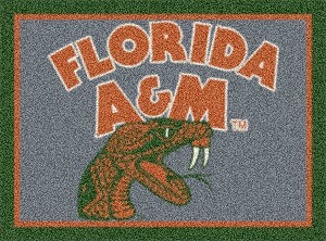 Florida A&M Rattlers Team Logo Area Rug