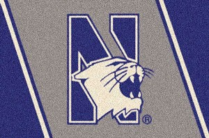 Northwestern Wildcats Team Logo Area Rug