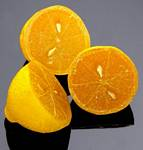 Fake Food Lemon Half (pack of 3)