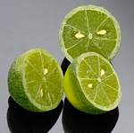 Fake Food Lime Half (pack of 3)