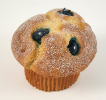 Fake Food Blueberry Muffin