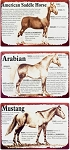Horse Lineage Metal Sign